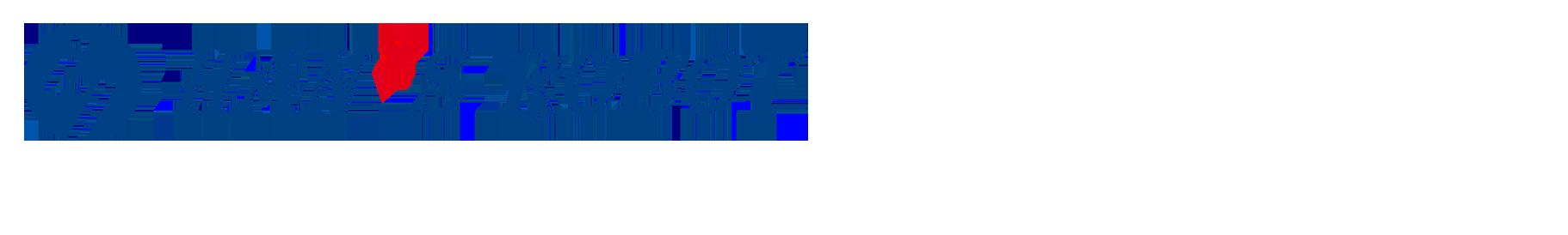 Elfin Robot